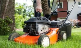 15 Советов по выбору газонокосилки