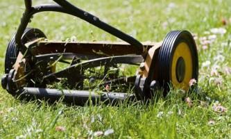 8 Советов по выбору механической газонокосилки