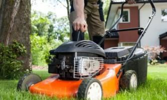 Бензиновые и электрические газонокосилки: какие лучше?