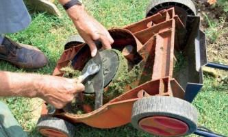 Что нужно знать об уходе за газоном и землей