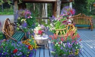 Цветущая терраса - правила озеленения