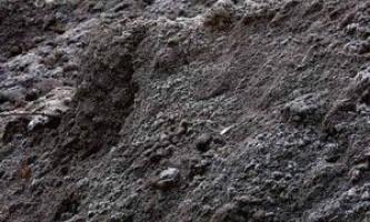Фундамент под банную печь – основа ее долгой службы