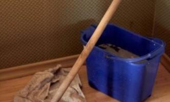 Как быстро вымыть пол – все зависит от материала