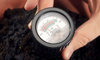 Как нормализовать кислотно-щелочной баланс почвы?