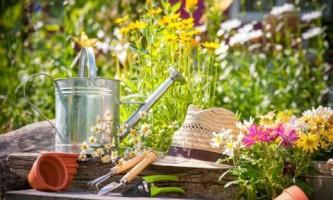 Как правильно хранить садовый инвентарь