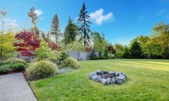 Как создать идеальный газон на участке?