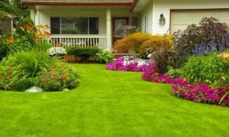 Каким должен быть правильный газон?