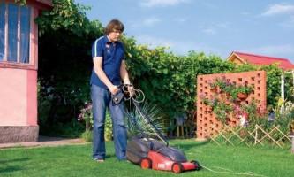 Когда нужно стричь газон?