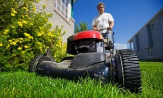 Парикмахеры для травы – газонокосилки