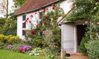 Розарий: разновидности роз и уход за ними
