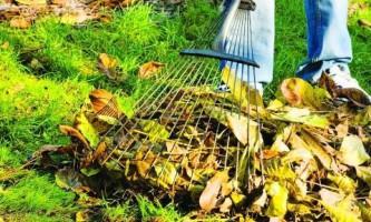 Сад осенью: уборка участка