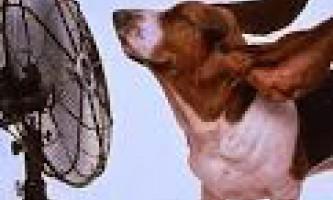 Системы вентиляции и кондиционирования помещений