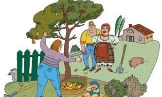 Соседские споры: обозначаем границы участка