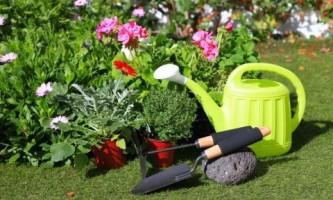 Совсем ручной: выбираем садовые инструменты
