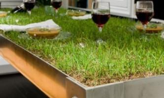 Стол-газон: завтрак, обед, ужин – на природе!
