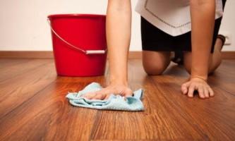 Техника для мытья полов: обзор популярного инновационного инвентаря