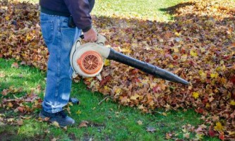 Техника для работ в саду. Садовые пылесосы и культиваторы