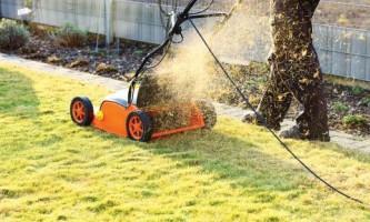 Зачем нужно мульчирование и рыхление газона?