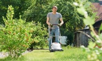 Зеленые процедуры. Правила стрижки, полива и удобрения газона